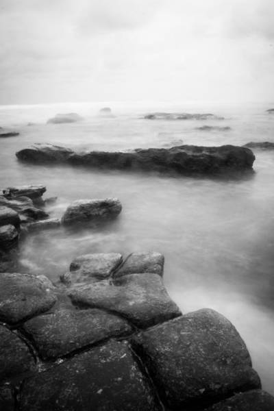 Photograph - Stillness And Strength by Parker Cunningham