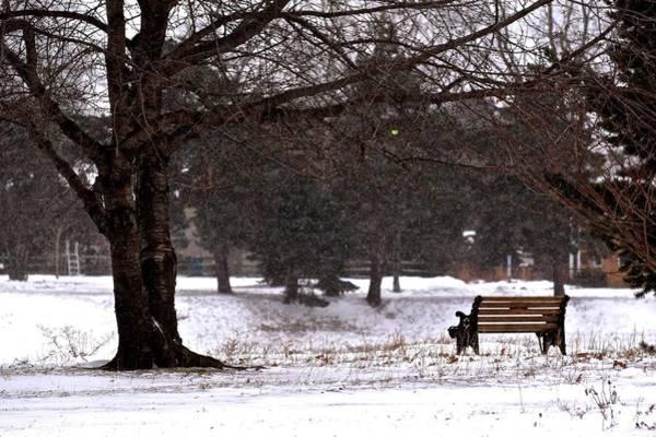 Photograph - Stillness On A Cold Winter Day by Jenny Regan