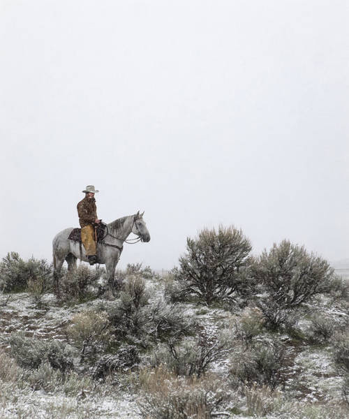 Cowboy Photograph - Stillness by Pamela Steege