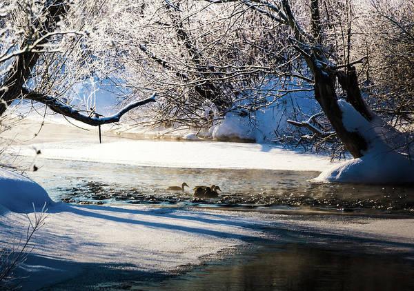 Photograph - Stillwater Winter by Robert McKay Jones