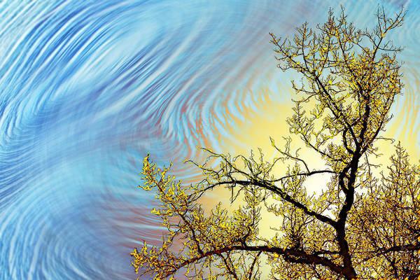 Digital Art - Stimulo-cirrus by Becky Titus