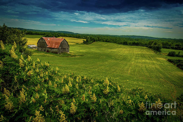 Photograph - Stirling Barn by Roger Monahan