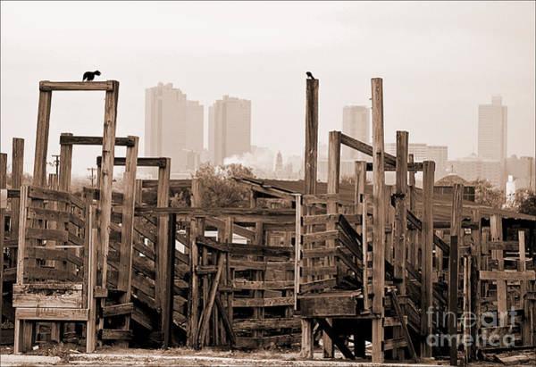 Stockyards Photograph - Stockyard Pens by Fred Lassmann