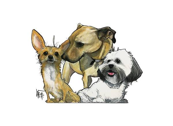 Pet Portrait Drawing - Stoddard 7-1394 by John LaFree