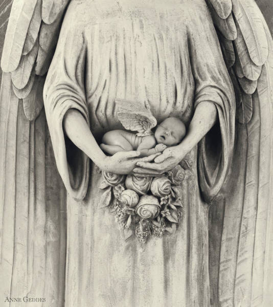 Baby Photograph - Stone Angel by Anne Geddes