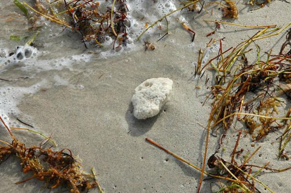 Stone At The Shore - South Beach Art Print