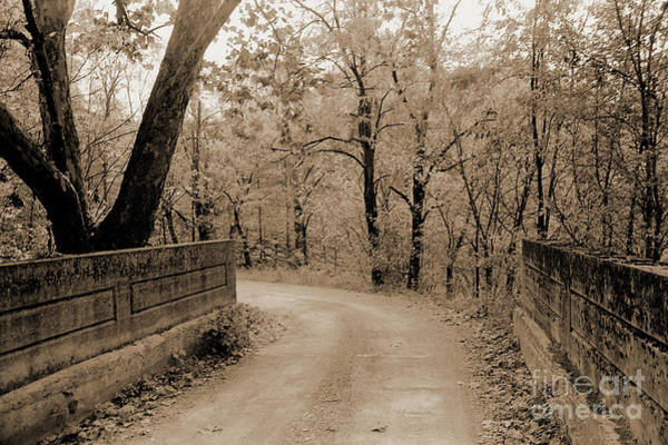 Photograph - Stone Bridge On Cave Hill Road by Gary Wonning