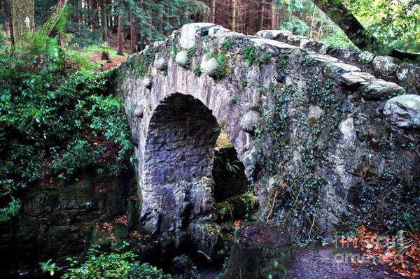 Photograph - Stone Bridge by Thomas R Fletcher