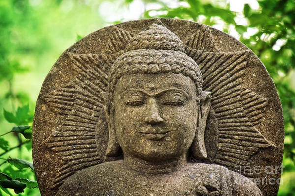 Photograph - Stone Buddha  by Angela Doelling AD DESIGN Photo and PhotoArt