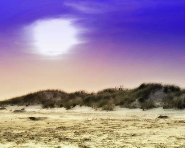 Photograph - Stone Harbor Sand Dune by John Feiser