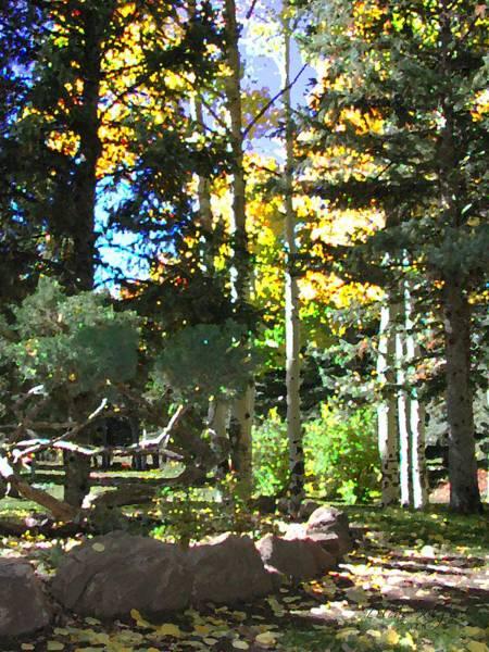 Stone Park Trails Art Print