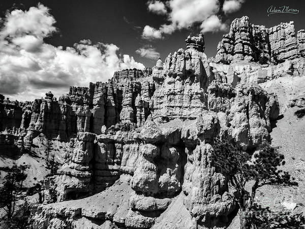 Photograph - Stone Temple, Black And White by Adam Morsa