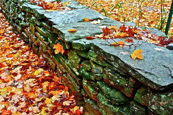 Photograph - Stone Wall by Diana Hatcher