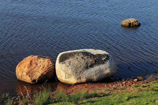 Photograph - Stones And Pond by Frank Romeo