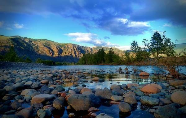 Photograph - Stones By The Similkameen by Tara Turner