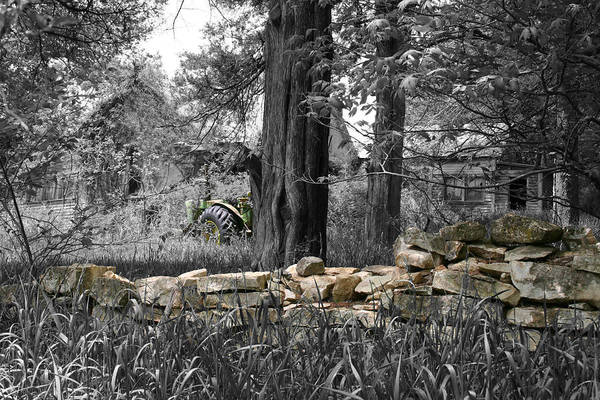 Photograph - Stonewall Deere by Dylan Punke