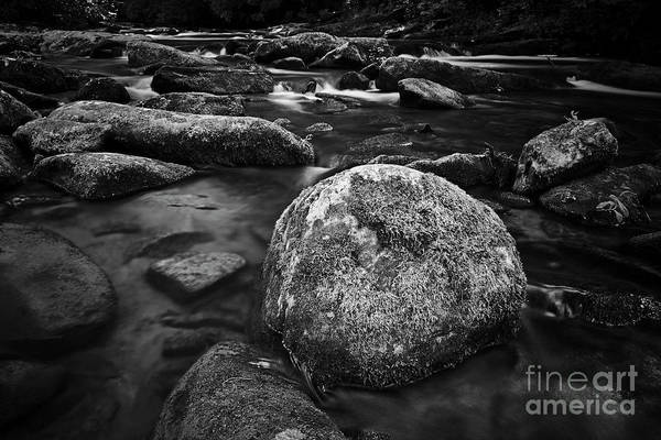 Photograph - Stoney Creek by Patrick M Lynch