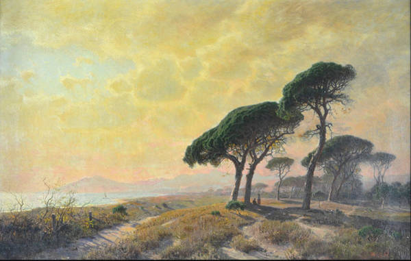Wall Art - Painting - Stoney Pines, Cannes   by William Stanley Haseltine