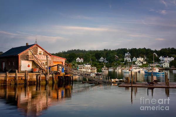 Wall Art - Photograph - Stonington Lobster Co-op by Susan Cole Kelly
