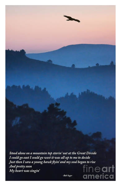 Wall Art - Photograph - Stood Alone On The Mountain Top by Jim Fitzpatrick