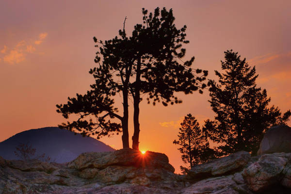 Wall Art - Photograph - Stop Right Here - Rocky Mountain Np - Sunrise by Nikolyn McDonald
