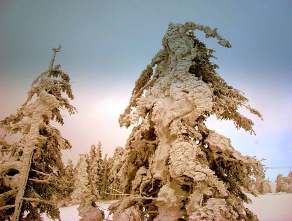 Gorecki Photograph - Stopped Wind by Henryk Gorecki