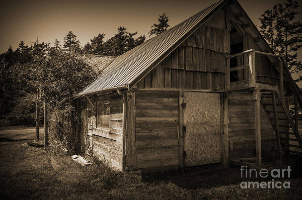 Photograph - Storage Shed In Sepia by Kirt Tisdale
