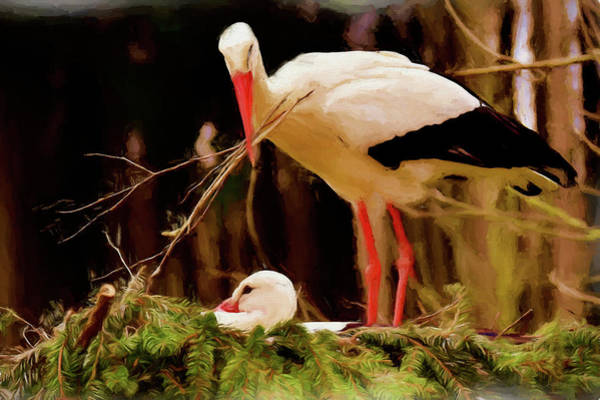 Painting - Stork Nest Building - Painting by Ericamaxine Price