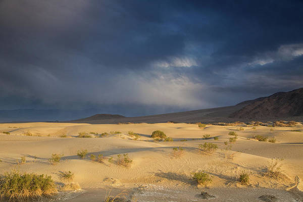 Death Valley Np Photograph - Storm Brewing Over Mesquite Dunes by Kunal Mehra