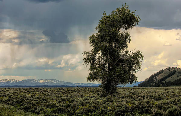 Photograph - Storm Clouds In Wyoming by Dan Sproul