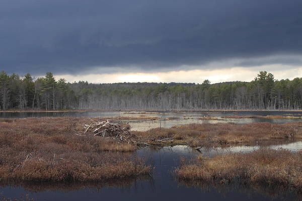 Wall Art - Photograph - Storm Clouds Over Beaver Pond by John Burk
