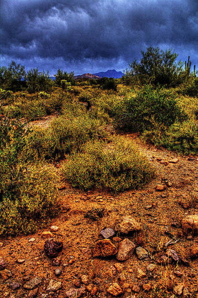 Storm Clouds Over The Sonoran Desert In Spring Art Print