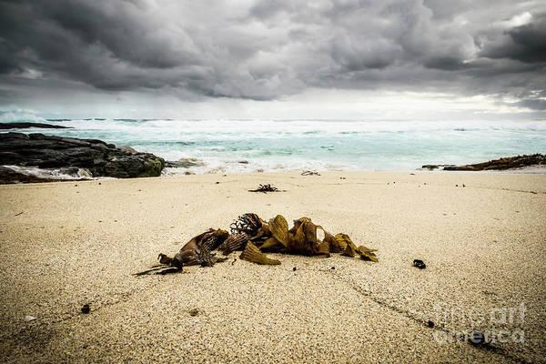 Wall Art - Photograph - Storm Coming by Jason Knott
