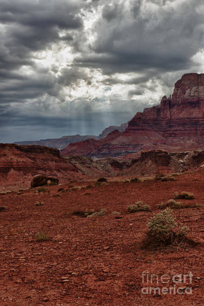 Stormcloud Photograph - Storm In The Vermillion Cliffs by Sandra Bronstein