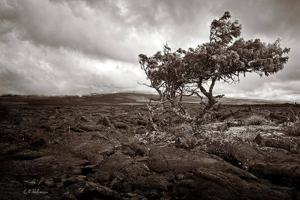 Photograph - Storm Moving In - Sepia by Christopher Holmes