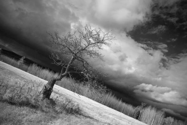 Storm Over Dead River Art Print