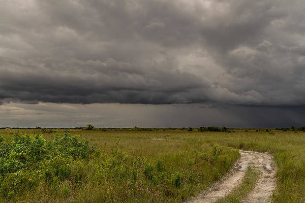 Photograph - Storm Over The Everglades-2 by Rudy Umans
