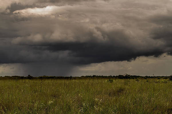 Photograph - Storm Over The Everglades-3 by Rudy Umans
