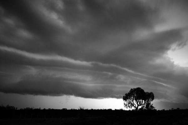 Photograph - Storm Passing Over Solitary Tree In The Desert by Keiran Lusk