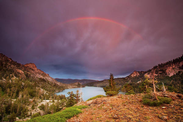 Juniper Photograph - Storm Skies Over Echo by Dan Holmes