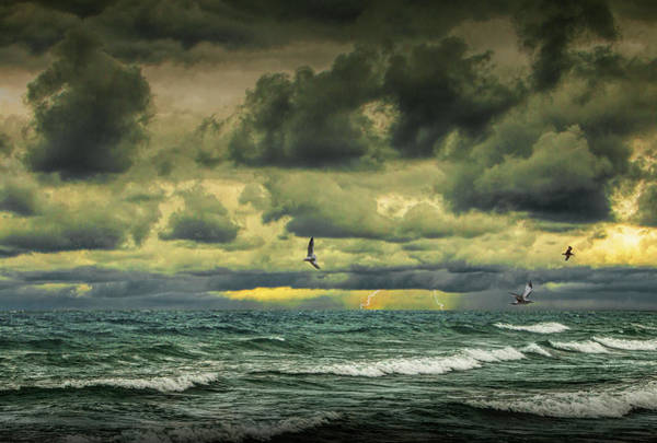 Photograph - Storm With Lightning With Gulls Flying Amid Waves Crashing On The Shore by Randall Nyhof