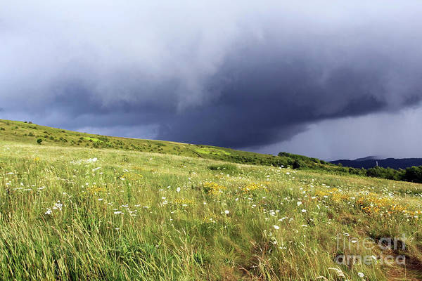 Photograph - Storming On Max Patch by Jennifer Robin