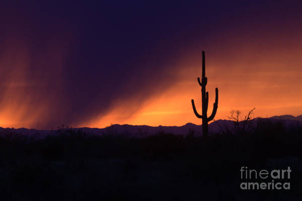 Wall Art - Photograph - Storms Brew In Scottsdale by Ruth Jolly