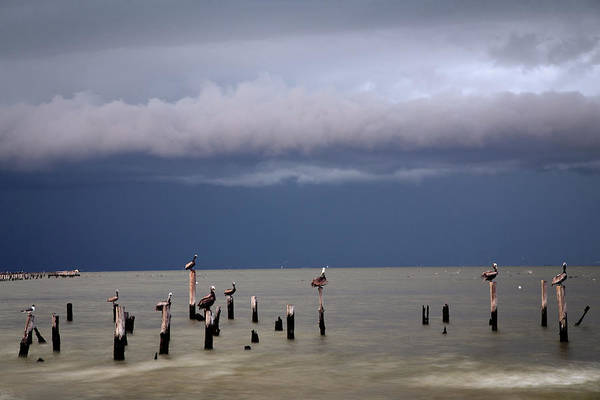 Wall Art - Photograph - Storms On The Way by Tom Weisbrook