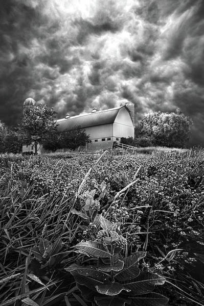 Wall Art - Photograph - Stormward Bound by Phil Koch