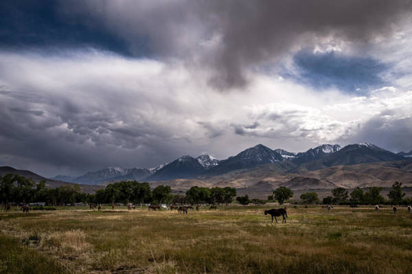 Wall Art - Photograph - Stormy Day In Big Pine by Cat Connor