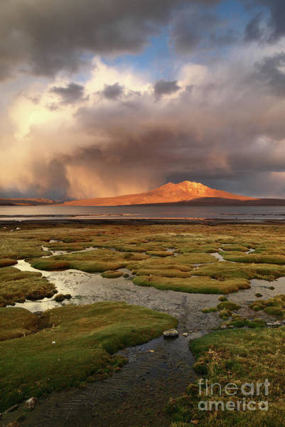 Photograph - Stormy Light Over Bofedales And Lake Chungara Chile by James Brunker