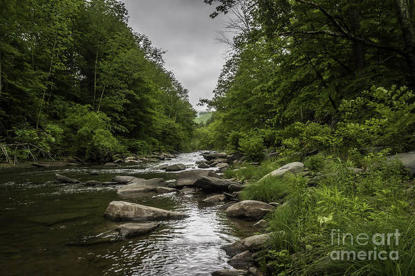 Catskills Photograph - Stormy Mountain Creek by DAC Photo