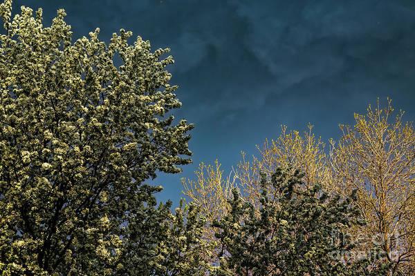 Photograph - Stormy Spring Sky by Jon Burch Photography