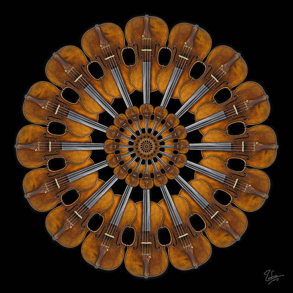 Photograph - Stradivarius Rosette by Endre Balogh